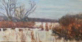 A Winter Day at Yellowwood Lake.jpg