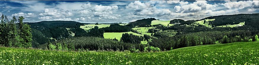 LP34-Q-B Selina Haas Schwarzwald Wandbild Panorama