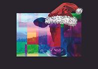 Weihnachtskarte MS064 von Selina Haas