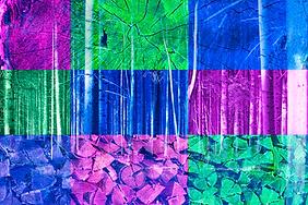 Leinwand-Druck LP43-B von Designerin Selina Haas