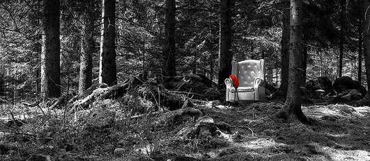 LP33-Q-SWR Bollenhut Selina Haas Panormabild Wandbild Schwarzwald