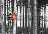 Postkarte MS 018 von Selina Haas