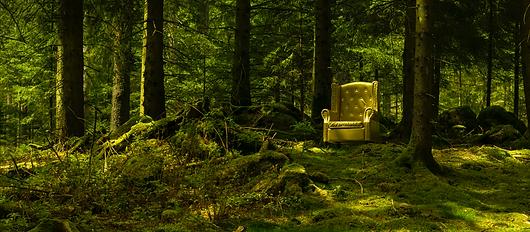Goldener Stuhl im Wald Selina Haas Wandbild Schwarzwald