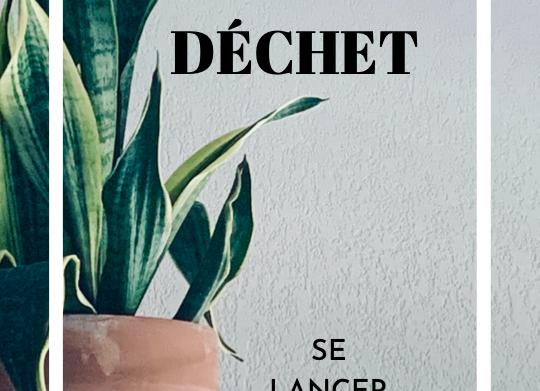 E-book - Zéro Déchet : Se lancer simplement (avec guide pratique à imprimer)