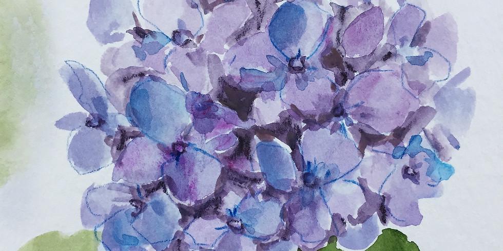 Hydrangeas in Watercolor (ONLINE)