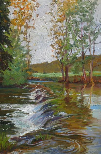 Falls, Rogon River, France