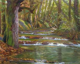 Creek, Orquevaux, France