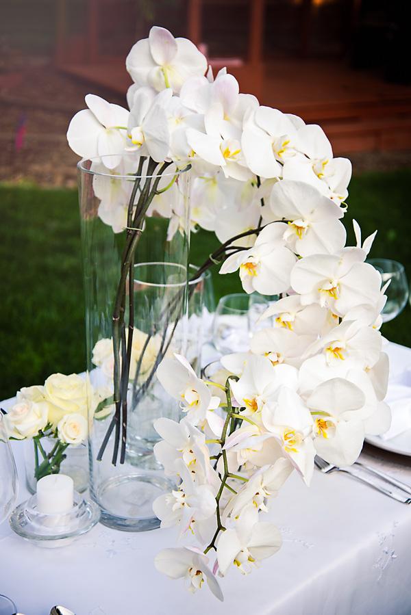 Orchid Arrangment