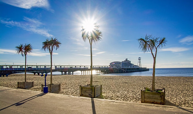 Bournemouth beach palms.jpg