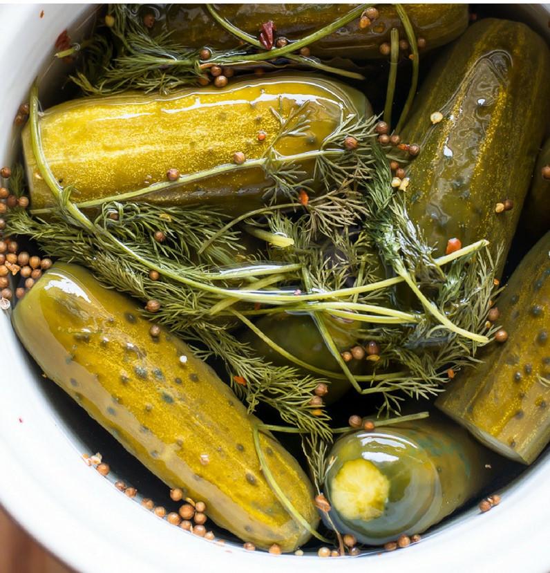kosher pickles.jpg