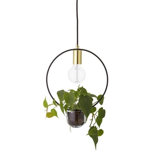 Pendant Lamp Gold Plant Hanger