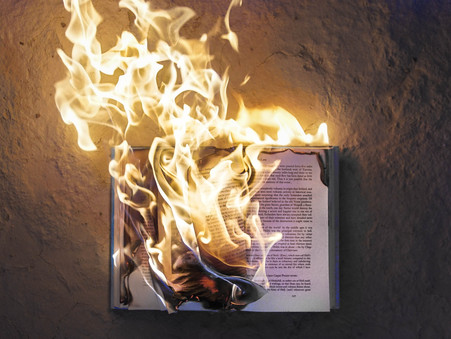 Destroy books that cast doubt on the inspiration of Scripture
