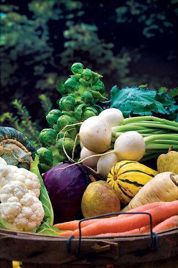fall-garden-vegetables.jpg