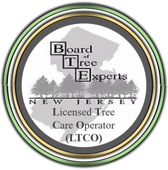 Licensed Tree Care Operator in Somerset,