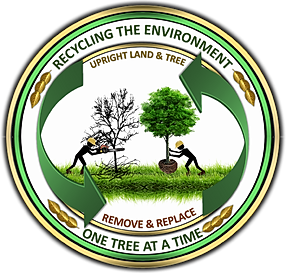 © Recycling the Environment, One Tree at a Time