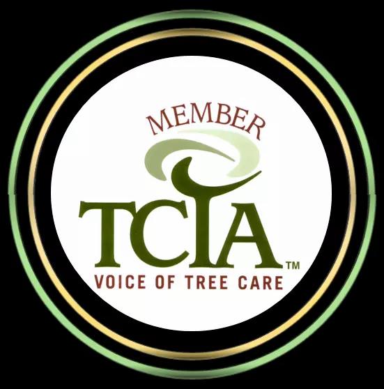 TCIA Member in Somerset, NJ
