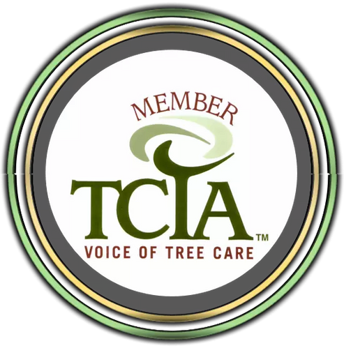 TCIA Member in Somerset, NJ