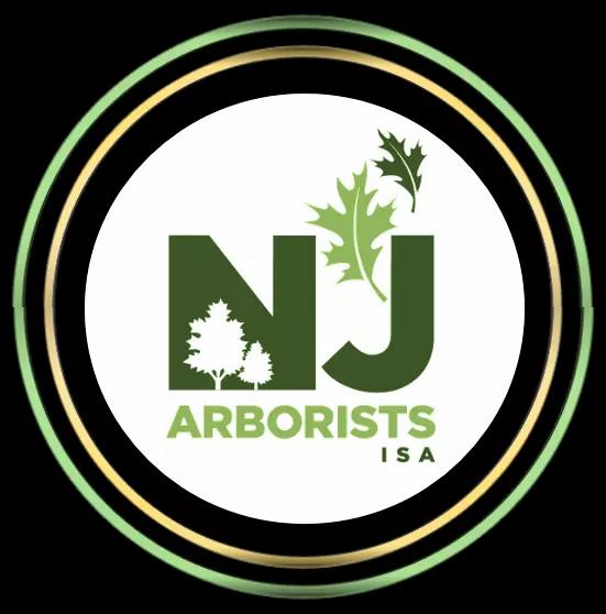 Arborist in Somerset, NJ