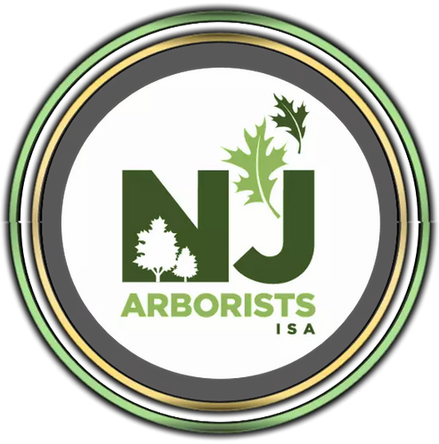 Arborist in Somerset, NJ