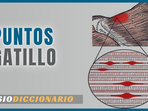 QUE SON LOS PUNTOS GATILLOS - #FISIODICCIONARIO