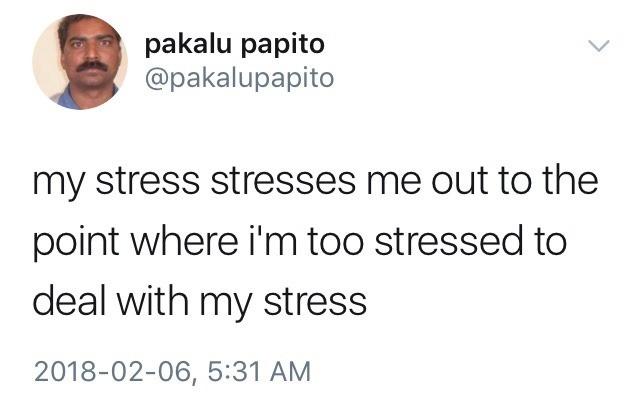 Stressy stressor