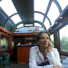 On the Panama Canal railway train
