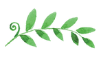 Painted%20Leaves%202_edited.png