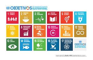 Sustainable_Development_Goals_POSTER_PT.