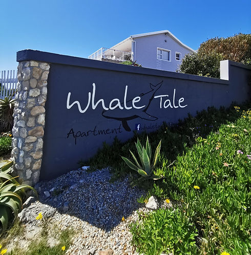 Whale%20Tale%20de%20Kelders_edited.jpg