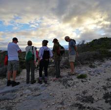 Whale Tale guided walks Western Cape