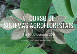 V CURSO DE SISTEMAS AGROFLORESTAIS (4)