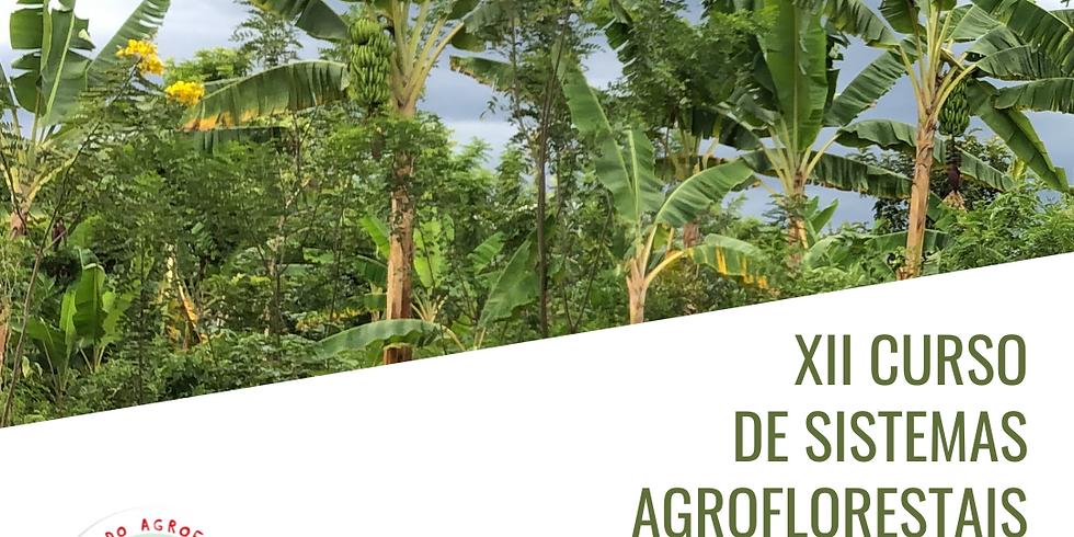 XII Curso de Sistemas Agroflorestais