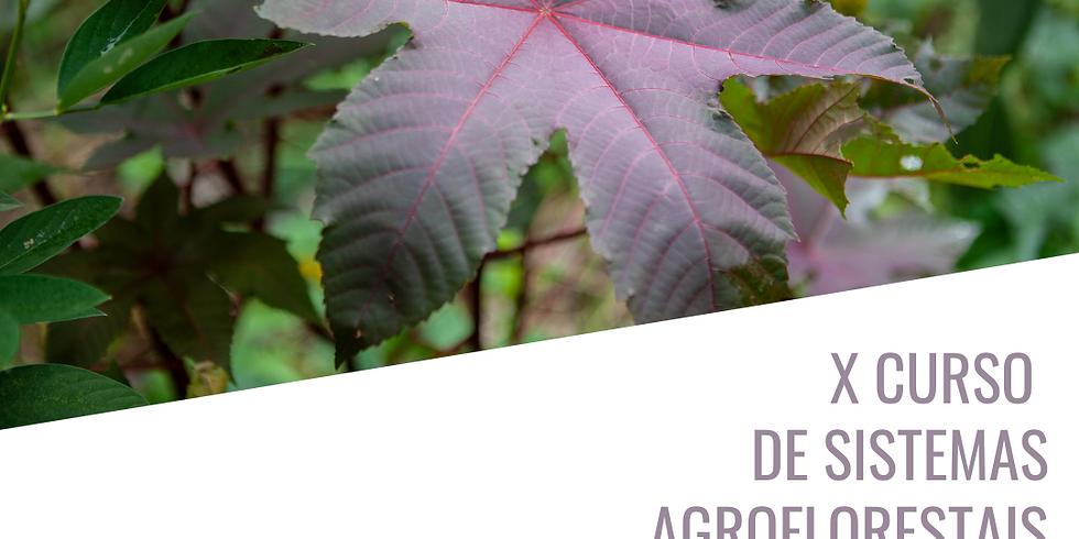 X Curso de Sistemas Agroflorestais