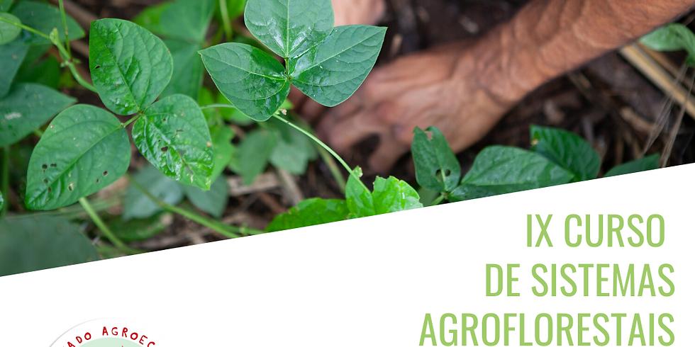 IX Curso de Sistemas Agroflorestais