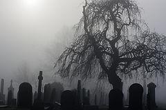 Halloween cemetery.jpg