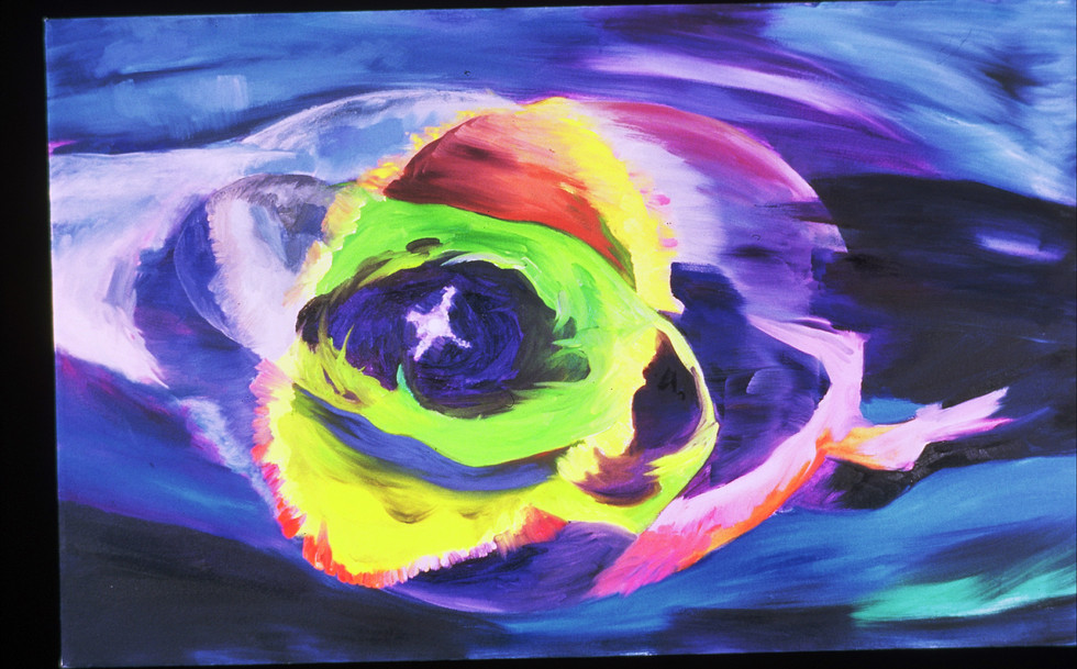 [SOLD] Cat's Eye (Nebula), 30x48