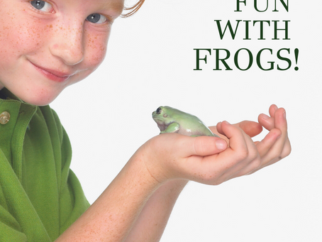Make Practice Organized with FROGS