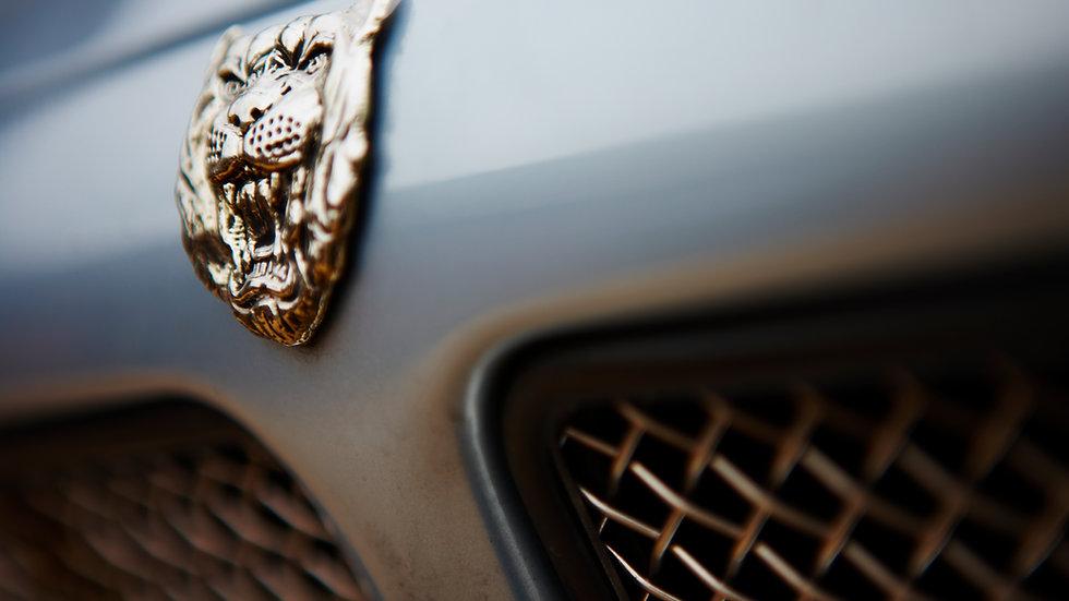 Jaguar Heritage Tour - Full Day Road Trip