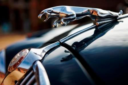 Jaguar Mk2 leaper