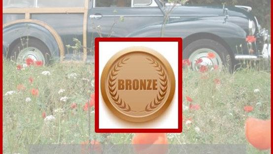 Bronze Classic Taster