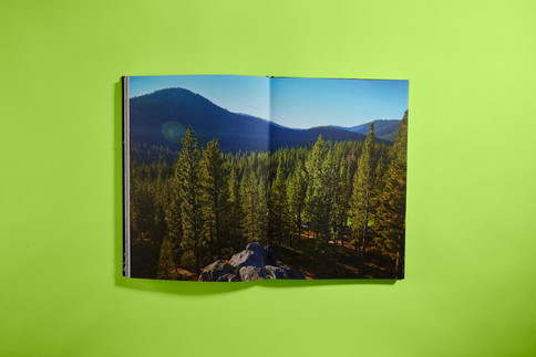 ThatBook_Ault2762.jpg