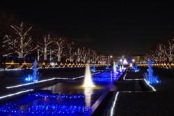 国営昭和記念公園ウィンタービスタ2016
