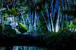 六本木アートナイト2018 毛利庭園