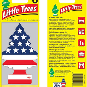 CarFreshnerCorporation Little Trees Hanging Air Freshener (Multiple Sizes / Varieties)