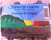 SpeichFarmsLLC US Grown Seed-In Concord Grapes (1qt carton)