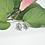 Thumbnail: Boucles d'oreilles «Oleaceae»