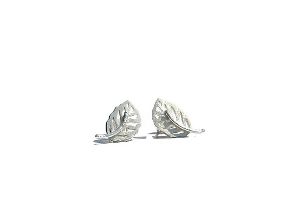 Boucles d'oreilles «Oleaceae»