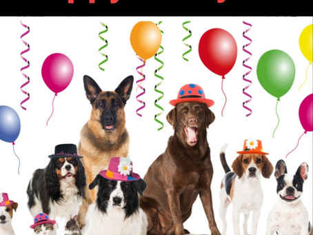 I just want to say Happy New year! To all my customers thanks for your support over this year 🐶