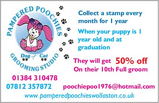 Puppy reward card front.PNG