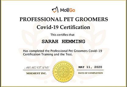 Covid 19 Certificate.JPG